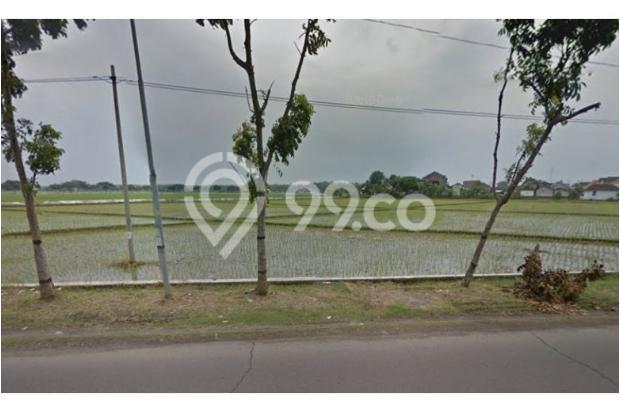 WA 087836460238, Situs Jual Beli Tanah di Telukan Sukoharjo  1,7 Hektar 10266514