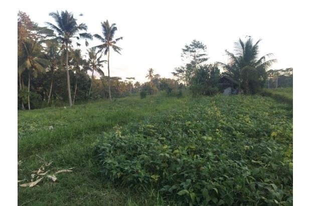 Rp1,12mily Tanah Dijual