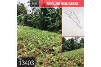 Kavling Harjasari, Bogor, 2.000 m², SHM
