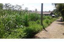 Tanah pertanian murah dan produktif di Mendalanwangi Wagir