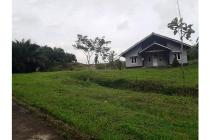 Tanah 2500 m2 Jual cepat Kebun & Investasi Cikidang Sukabumi
