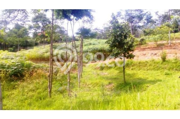 Tanah Di Jual Bojong Koneng 3395874