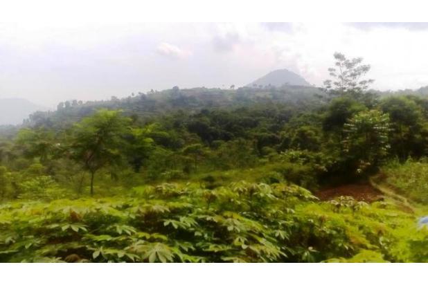 Tanah Di Jual Bojong Koneng 3395875