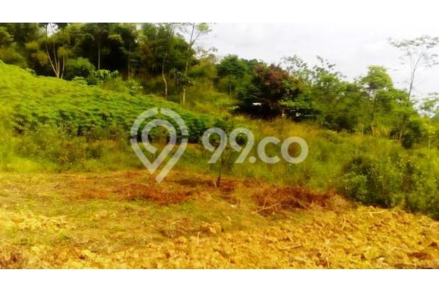 Tanah Di Jual Bojong Koneng 3395879