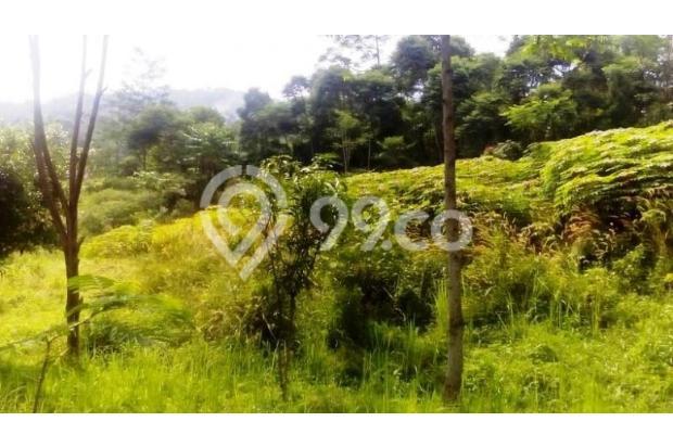 Tanah Di Jual Bojong Koneng 3395880