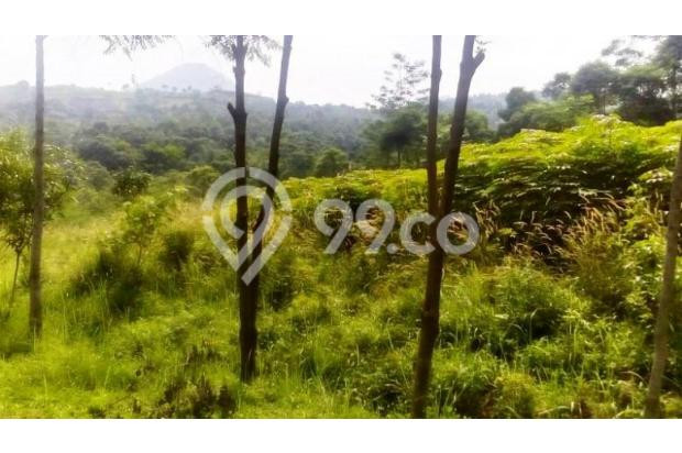Tanah Di Jual Bojong Koneng 3395882