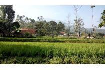 tanah sawah dekat dengan tempat wisata gunung puntang, tanah murah cimaung