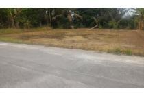 Anda Pilih Tanah Kaveling di Berbah, 4 Lokasi Berbeda Menanti
