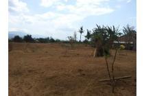 Ry Home Property (201137) Tanah Desa Banjar, Bali