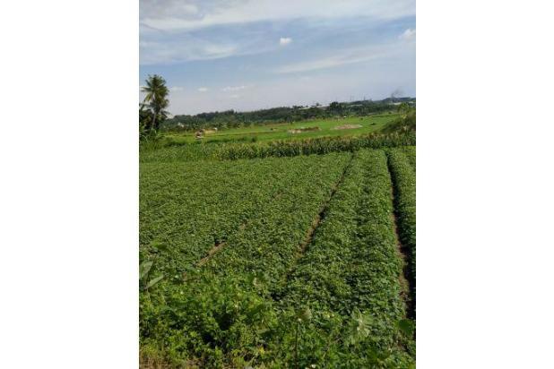 Rp90mily Tanah Dijual