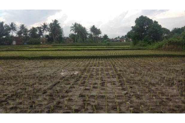 Rp6,27mily Tanah Dijual