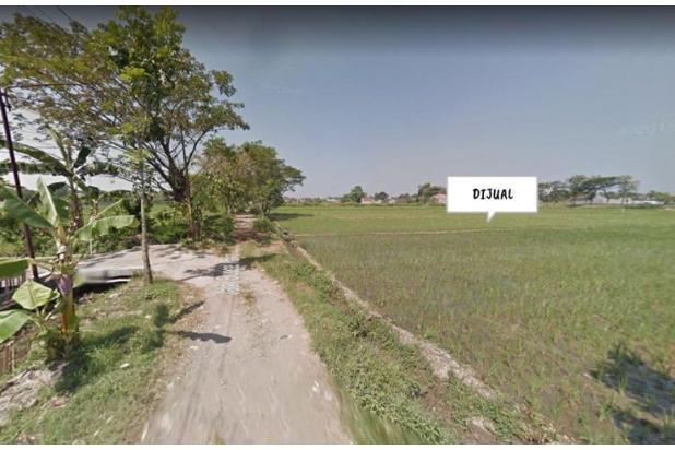 Rp3mily Tanah Dijual