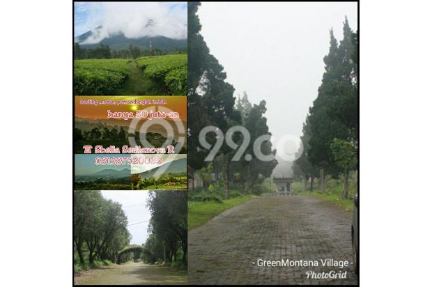 Green Montana Village, dapatkan harga perdana 50jutaan/Kavling di Cipanas. 15829344