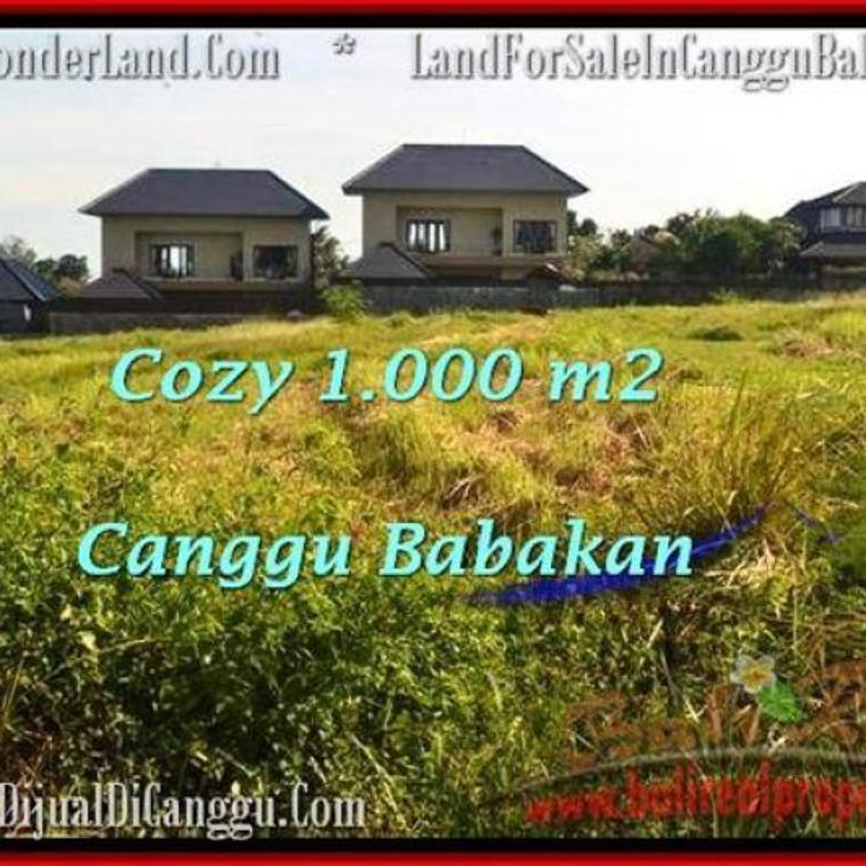 Strategis 10 are View sawah link villa