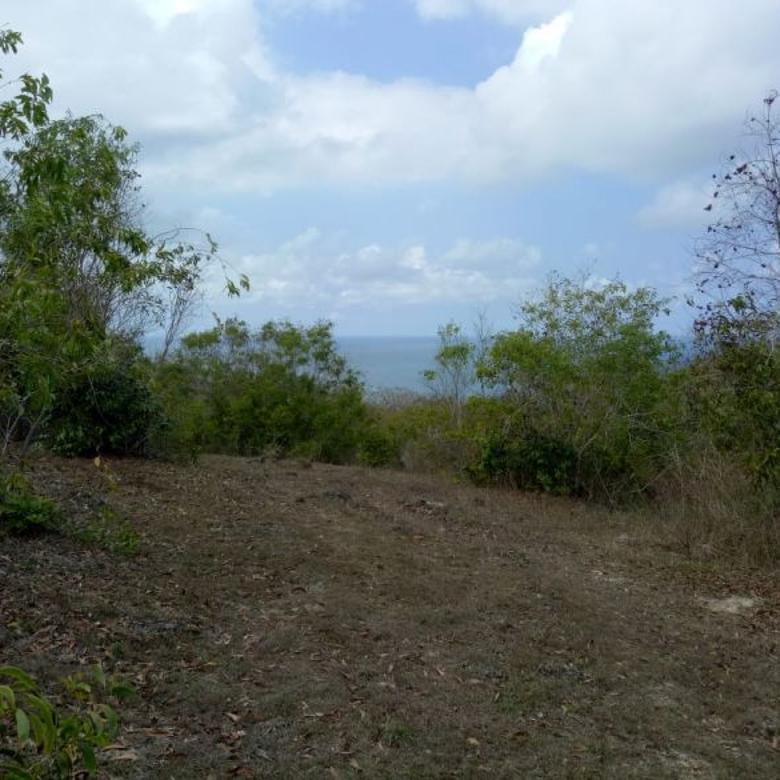 Lahan Pecatu Kuta Bali LOS Tebing LOKASIH Strategis Bisa NEGO