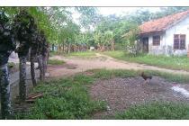 Tanah Darat Strategis Sukawangi Bekasi