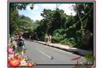 Lokasi Potensial 2.200 m2  View Sungai di Sentral Ubud TJUB509
