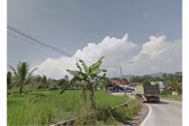 Dijual Tanah Sawah di Sukabumi, Jawabarat