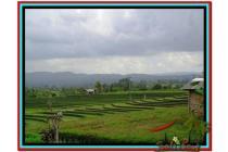 Lokasi Potensial 5.450 m2 View sawah gunung dan laut di Tabanan TJTB152