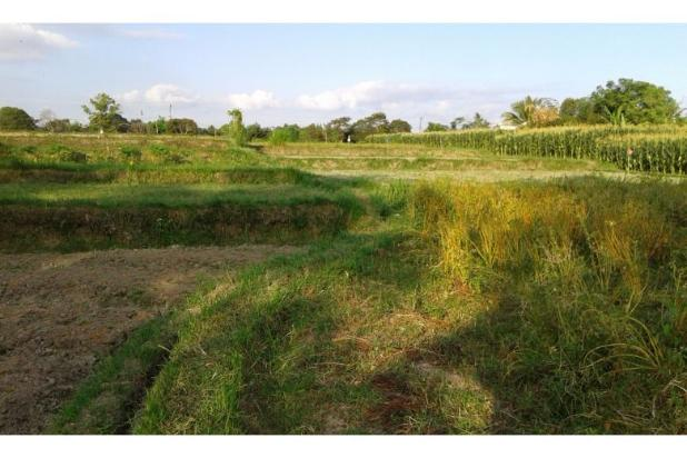 Rp74,1mily Tanah Dijual