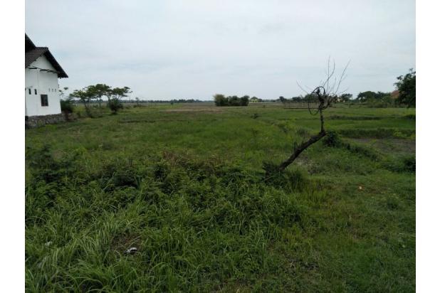 Rp6,55mily Tanah Dijual
