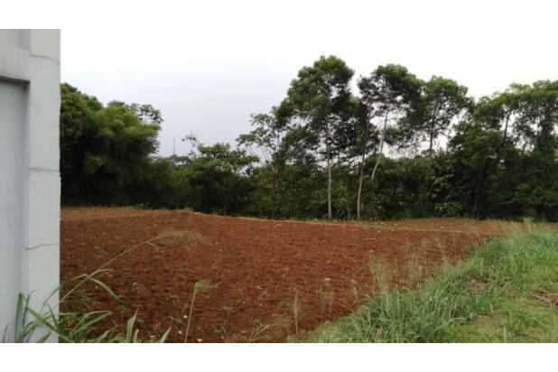 Rp2,06mily Tanah Dijual