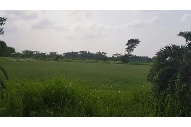 Rp375mily Tanah Dijual