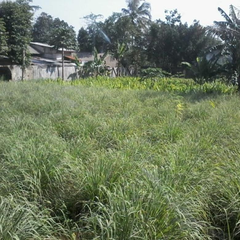 Dijual Tanah Ngantong dekat Exit Tol di Tapos Depok