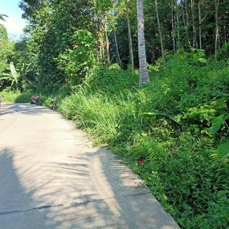 Tanah 900 m Pinggir Jalan Pabuaran Sepang Dekat Untirta