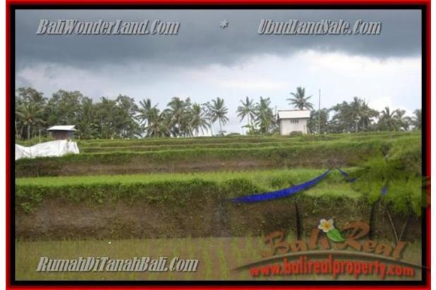 Peluang Investasi,  3.500 m2 di  Ubud Pejeng 2559024