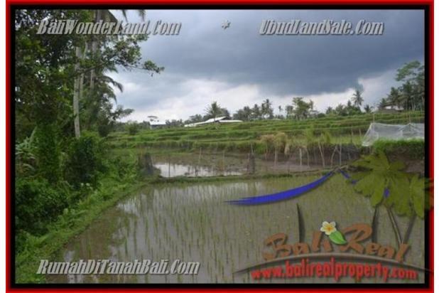 Peluang Investasi,  3.500 m2 di  Ubud Pejeng 2559025
