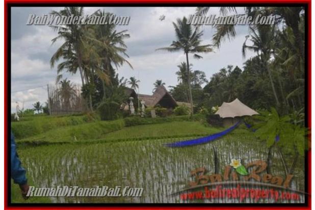 Peluang Investasi,  3.500 m2 di  Ubud Pejeng 2559026