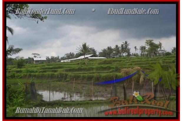 Peluang Investasi,  3.500 m2 di  Ubud Pejeng 2559027