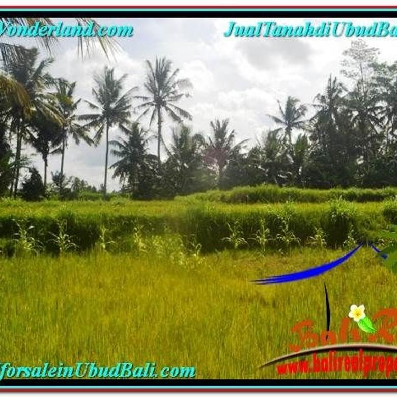 Tanah View Sawah 400 m2 di Ubud Pejeng UBR627