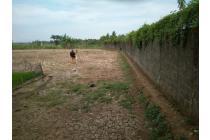 Jual Tanah Murah di Rajeg (Cocok Untuk Home Industri)