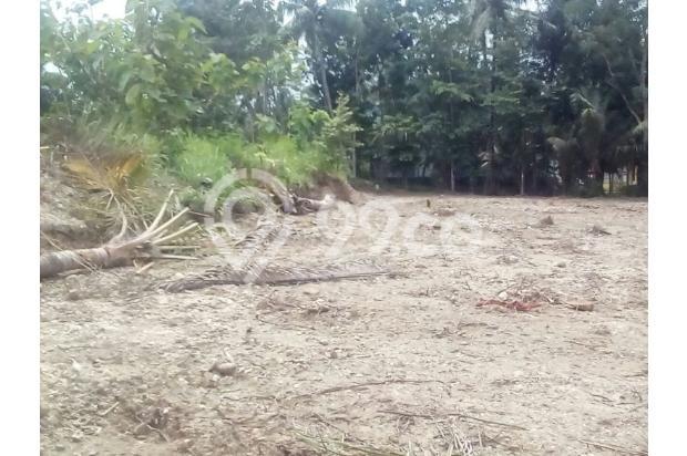 Tanah Kapling Wates: Cash Tempo 12 X Cicil Bebas Bunga 17698843