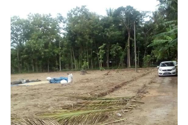 Tanah Kapling Wates: Cash Tempo 12 X Cicil Bebas Bunga 17698844