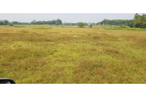 Rp40,9mily Tanah Dijual