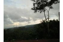 Vila-Probolinggo-17
