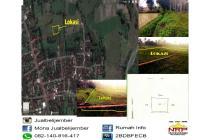 Tanah Sawah untuk Investasi di Gebang