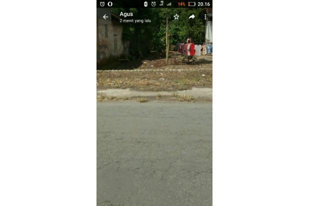 Dijual cepat tanah murah di jalan poros desa Bangsri  bisa negosiasi 14371684