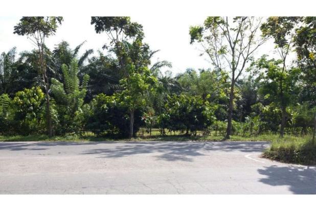 Dijual Tanah di Megawati Binjai 9651441