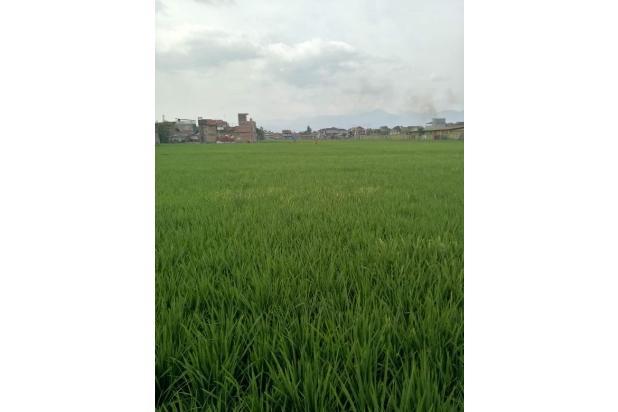 Rp35,2mily Tanah Dijual