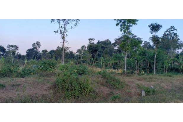 Rp9,6mily Tanah Dijual