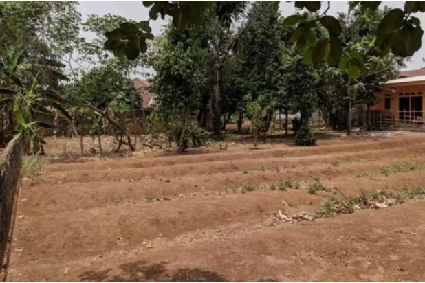 Rp1,97mily Tanah Dijual