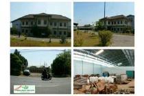 Dijual ex pabrik pampers nol jalan raya di beji pasuruan hks4873