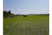 Dijual cepat Tanah / Kavling 5400 m2 shm di Rawalini, dekat Bandara Soetta