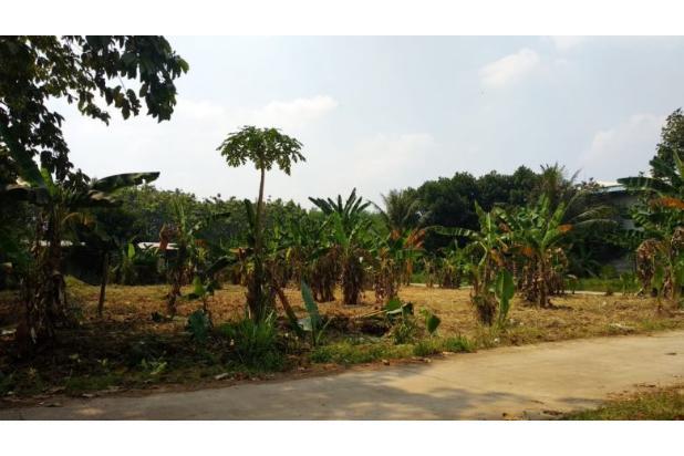 Rp5,75mily Tanah Dijual