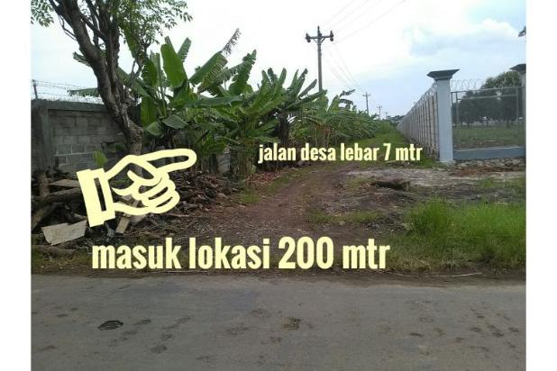 Dijual Lahan 50 Ha Peruntukan Perumahan Lokasi Wonosari Kendal Kota 9586224