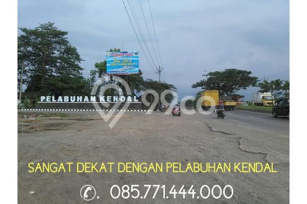 Dijual Lahan 50 Ha Peruntukan Perumahan Lokasi Wonosari Kendal Kota 9586286